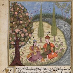 Дерево вак-вак. Иллюстрация с арабского манускрипта Dārābnāmah
