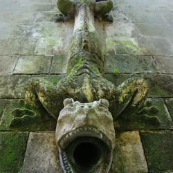 Дракон-горгулья из Шато де Пьерфонс