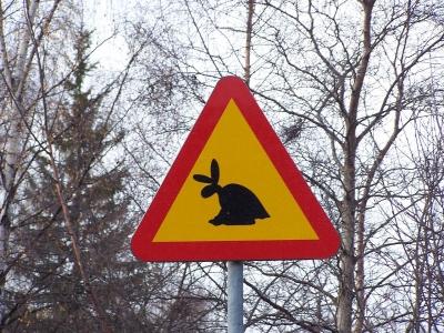 Шуточный дорожный знак рядом с музеем сквадера в шведском Сундсвалле предупреждает о сквадерах на дороге.