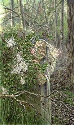 Бузинная матушка. Иллюстрация Лизы Хант (2007)