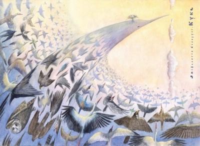 Кук. Иллюстрация Юрия Подвербного (Irgik)