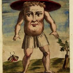 Блемий на рисунке Улисса Альдрованди