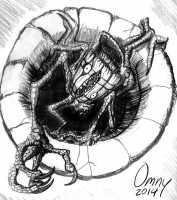 Мараббекка. Иллюстрация Дэвида Мёрка