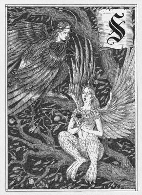 Сирин и Алконост. Иллюстрация Юлии Широниной (CoalRye)
