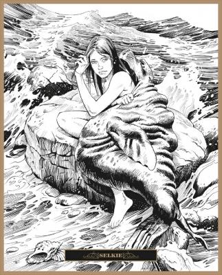 Шелки. Иллюстрация Клаудио Санчеса Вивероса