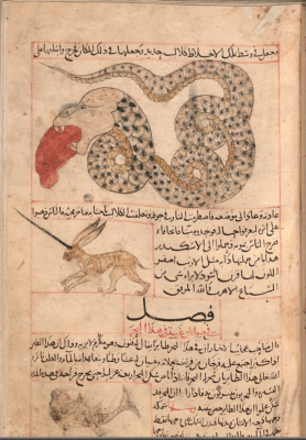 """Мирадж и морской змей. Иллюстрация к трактату Аль-Казвини """"Чудеса создания и чудеса существ и странных существующих вещей"""""""