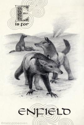 Энфилд. Рисунок Мелинды Биверс