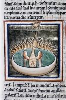 Феникс. Рукопись Бодлеянской библиотеки (MS Ashmole 1511, fol.068r.)