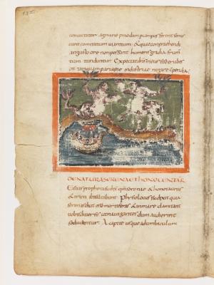 Сирена и онокентавр. Рукопись Городской библиотеки Берна (Cod. 318, fol.13v)