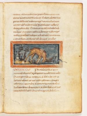 Олень атакует змею. Рукопись Городской библиотеки Берна (Cod. 318, fol.17r)