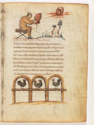 Индийский камень. Петух. Рукопись Городской библиотеки Берна (Cod. 318, fol.21r)