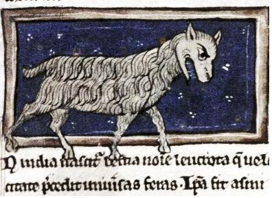 Левкрота. Рукопись Бодлеянской библиотеки (MS. Bodley 533, fol.007r.)