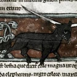 Эал. Рукопись Бодлеянской библиотеки (MS. Bodley 533, fol.007v.)