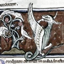 Дерево перидексион. Рукопись Бодлеянской библиотеки (MS. Bodley 533, fol. 022r.)