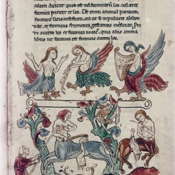 Сирены и онокентавры. (Рукопись Бодлеянской библиотеки. MS. Bodley 602, fol. 010r)