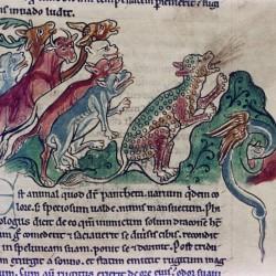 Пантера. (Рукопись Бодлеянской библиотеки. MS. Bodley 602, fol. 020r)