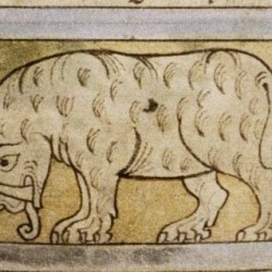 Слон. Рукопись Бодлеянской библиотеки (MS. Bodley 614, fol. 039v.)