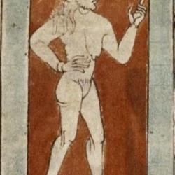 Гермафродит. Рукопись Бодлеянской библиотеки (MS. Bodley 614, fol. 050v.)