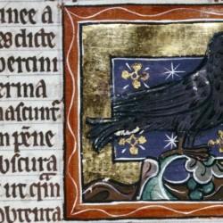 Эрциния. (Рукопись Бодлеянской библиотеки. MS. Bodley 764, fol. 072r)