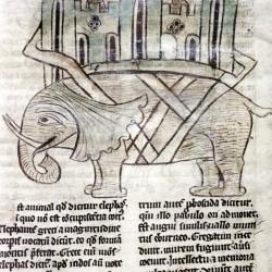 Слон с осадной башней на спине. Рукопись Бодлеянской библиотеки (MS. e. Mus. 136, fol.019v)