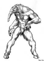 Капелобо. Иллюстрация Пабло Итало