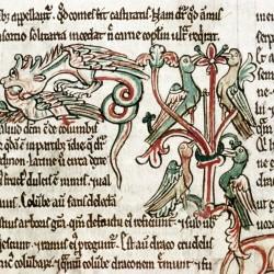 Дерево перидексион. Дракон поедает голубя. Рукопись Бодлеянской библиотеки (MS. Douce 167, fol.010r.)