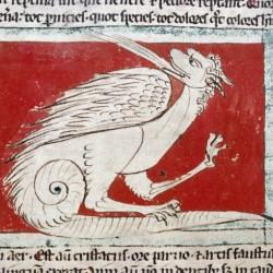 Дракон. Рукопись Бодлеянской библиотеки (MS Douce 88, fol.022v.)