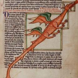 Дракон (Рукопись Британской библиотеки MS Harley 3244, fol. 59r)