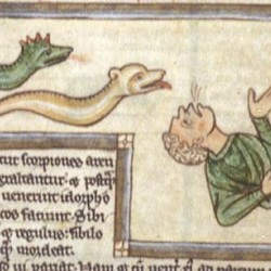 Регулус (василиск) (Рукопись Британской библиотеки MS Harley 3244, fol. 59v)