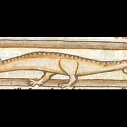 Сирена-змея (Рукопись Британской библиотеки MS Harley 3244, fol. 62v)