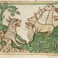 Пантера выходит из пещеры к зверям (Рукопись Британской библиотеки MS Harley 3244, fol. 37r)