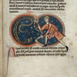 Аспид и заклинатель (Рукопись Британской библиотеки MS Harley 4751, fol. 61r)