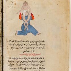 Давалпа. Рукопись Гарвардского музея искусств (1972.3, fol.93v.)
