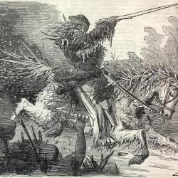 Ледяной Джек. Карикатура XIX века