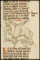 Грифон. Рукопись Национальный библиотеки Нидерландов (KB, 128 C 4, fol. 91r.)