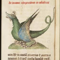 Дракон. Рукопись Национальный библиотеки Нидерландов (KB, 72 A 23, fol. 47v.)