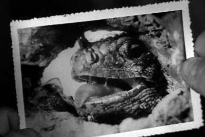 """Кадр из фильма """"Король динозавров"""" (King Dinosaur, 1955)"""
