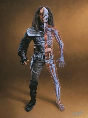 Клингонская анатомия. Иллюстрация Дэна Карри (1998)
