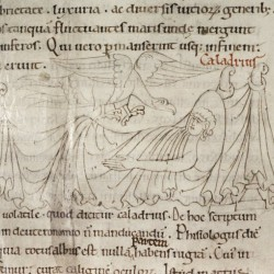 Харадр. Рукопись Бодлеянской библиотеки (MS Laud. misc.247, fol.142r.)