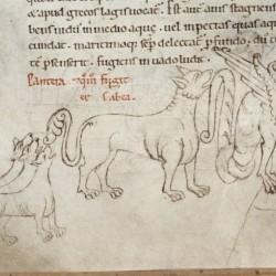 Пантера и дракон. Рукопись Бодлеянской библиотеки (MS Laud. misc.247, fol.154v.)