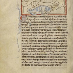 Гидрус и крокодил. Нортумберлендский бестиарий. Музей Гетти, Лос-Анджелес (MS. 100, fol.57v.)