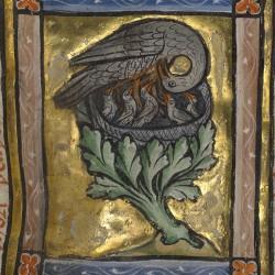 Пеликан вскармливает птенцов. Рукопись музея Гетти в Лос-Анджелесе (MS. Ludwig XV 3, fol.17r.)