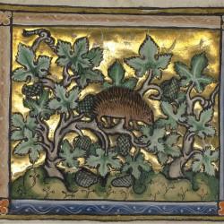 Ёж. Рукопись музея Гетти в Лос-Анджелесе (MS. Ludwig XV 3, fol.79v.)