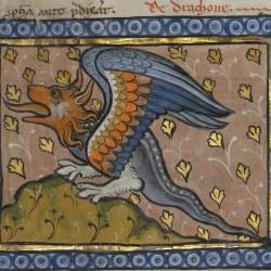 Дракон. Рукопись музея Гетти в Лос-Анджелесе (MS. Ludwig XV 3, fol.89r.)