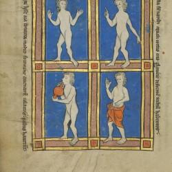 Чудовищные народы. Рукопись музея Гетти в Лос-Анджелесе (MS. Ludwig XV 4, fol.118v.)