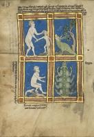 Чудовищные народы. Рукопись музея Гетти в Лос-Анджелесе (MS. Ludwig XV 4, fol.119v.)