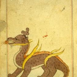 Тубан (дракон). Рукопись Национальной библиотеки медицины, Бетесда, США (MS P 2, fol. 197r.)