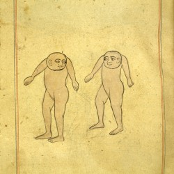 Люди с головами в груди. Рукопись Национальной библиотеки медицины, Бетесда, США (MS P 2, fol. 59r.)
