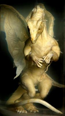 Заспиртованный дракончик, найденный в графстве Оксфордшир на юге Англии
