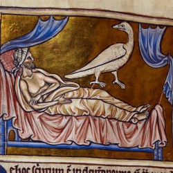 Харадр смотрит на больного. Рукопись Британской библиотеки (Royal 12 C XIX, fol. 47v.)